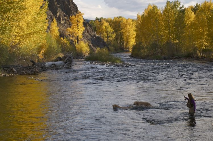 Fishing report big wood river by silver creek outfitters for Silver creek idaho fishing