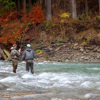 Fighting a Cattaraugus Creek New York steelhead