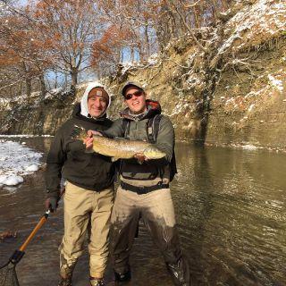 New York lake run brown trout