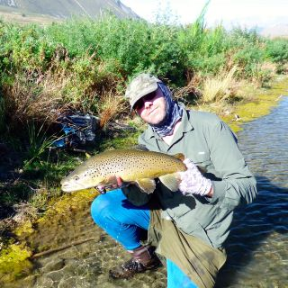 High country spring creek wild Brown Trout of 7lb caught on a tradition mayfly dry.