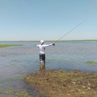 Wade fishing a run / Vadeando una pequeña corredera