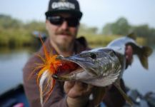 Fly Fishing for Pike - Interview with Guide Norbert Renaud