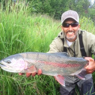 Guided Kenai River Rainbow Trout fishing with Alaskan Guide Perry Corsetti.
