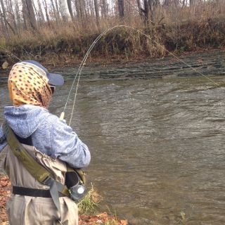 Steelhead Alley Fishing