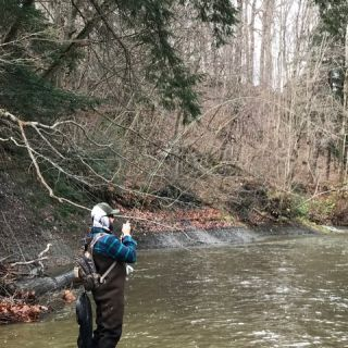Steelhead Alley fiushing