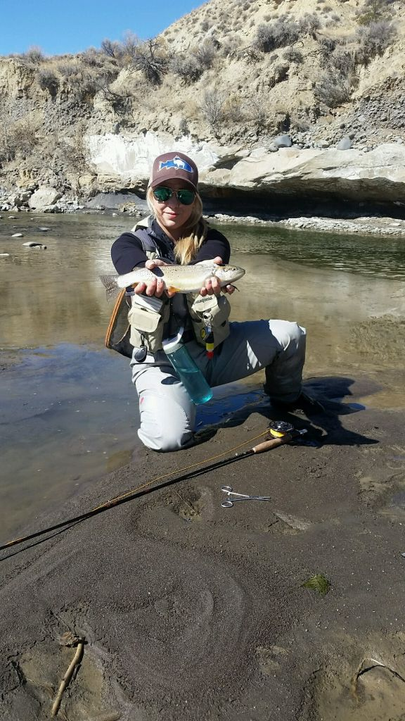 Griffin fishin fly fishing guide casting instructor for Cody wyoming fly fishing
