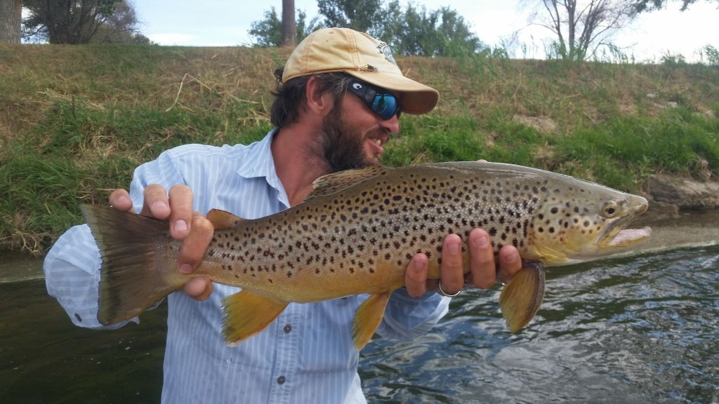 Owl creek flies fly fishing outfitter fly dreamers for Bighorn river fly fishing