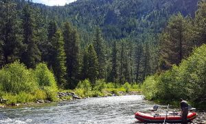 Bitterroot River, Darby, Montana, United States