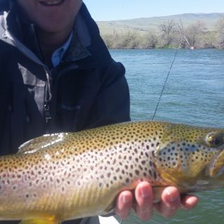 Big Horn River, thermopolis, wy