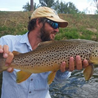 Bighorn River, Thermopolis, Wyoming fly fishing