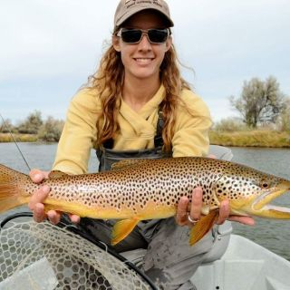 26 inch brown trout. Bighorn River, Thermopolis, Wyoming