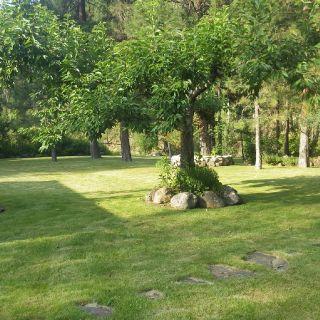 Riverfront landscaped backyard