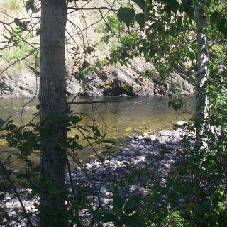 River bordering the Lodge