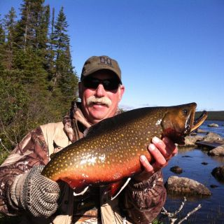 September 8 pound Brook Trout in bright breeding colors!