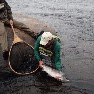Outstanding Atlantic Salmon fishing!