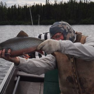 Guest about to release a healthy Brook Trout at Igloo Lake Labrador in 2016