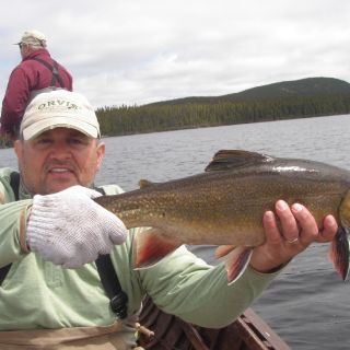 Brook Trout heaven - Igloo Lake Lodge