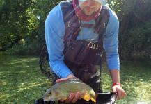 Fly-fishing Situation of Grayling shared by Uros Kristan from Sava Bohinjka River