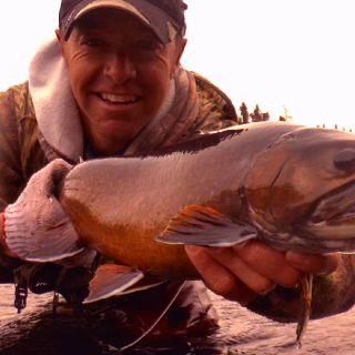 Labrador - Igloo Lake Brook Trout