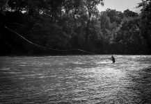 salmon atlantico Fly-fishing Situation – Nicolas Buoro shared this Image in Fly dreamers