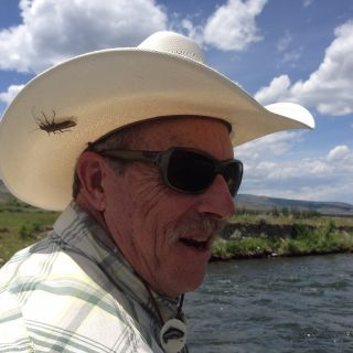 Salmon fly season on the Madison River