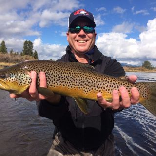 Fall brown trout - Madison River Yellowstone National Park