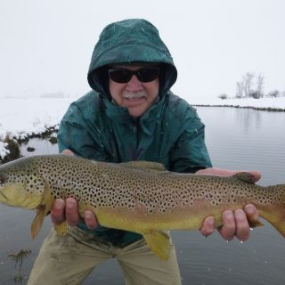 A little snow, a lot of brown from the slough