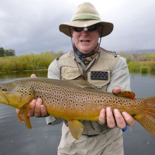 Brown Gold in OZ at Pearce's Spring Creek