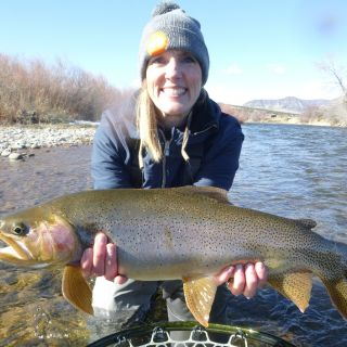 Big Cut-Bow from the Lunch Bar Run on the White River