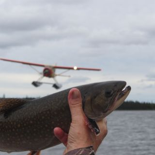 Beaver floatplane & brook trout at Igloo Lake Labrador