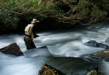Rainbow trout Fly-fishing Situation – Edevar Zorrer shared this Image in Fly dreamers