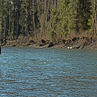 Patience is a bit part of steelhead fishing!