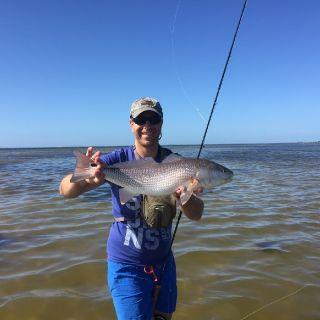 Lustrik and Red fish, Florida