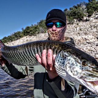 Tiger Muskie, NM