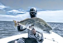 Orion Good 's Fly-fishing Imageof a Redfish| Fly dreamers
