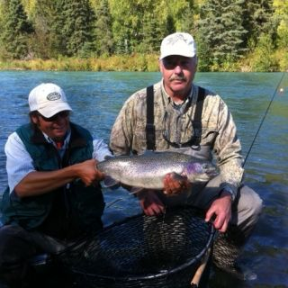 Very plump Kenai River Rainbow caught fly fishing.