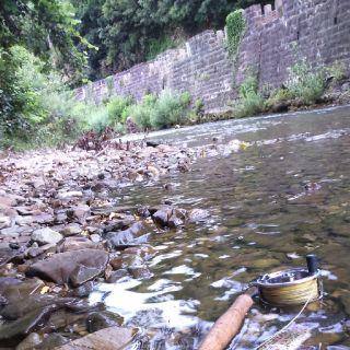 river Rižana