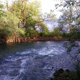 river Bistra