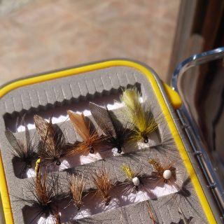 Flies set for Slovenia rivers