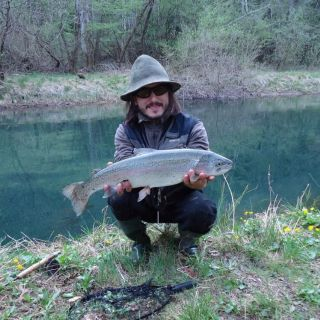 Rainbow trout from river Ribnica