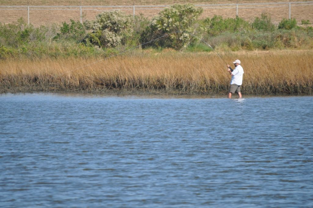 Galveston fly fishing fly fishing guide fly dreamers for Galveston fishing guides
