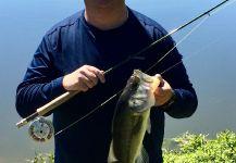 Joe Rowe 's Fly-fishing Catchof a marsh bass| Fly dreamers