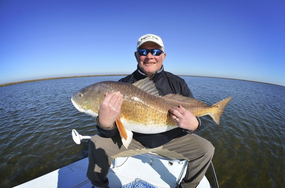 Giant reds fly fishing guide fly dreamers directory for Reds fly fishing