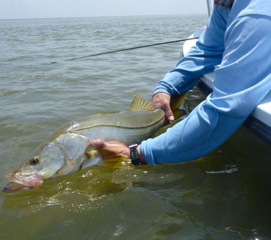 Rising tide charters fly fishing guide fly dreamers for Rising fly fishing