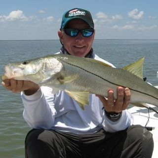 Snook on the flats.