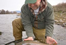 Fly-fishing Situation of Salmo fario - Picture shared by Michael Stack | Fly dreamers