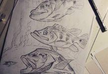 Kid Ocelos's Fly-fishing Art Photo | Fly dreamers