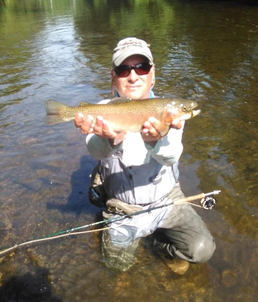 Young 39 s fly fishing fly fishing guide fly dreamers for Fly fishing flies chart