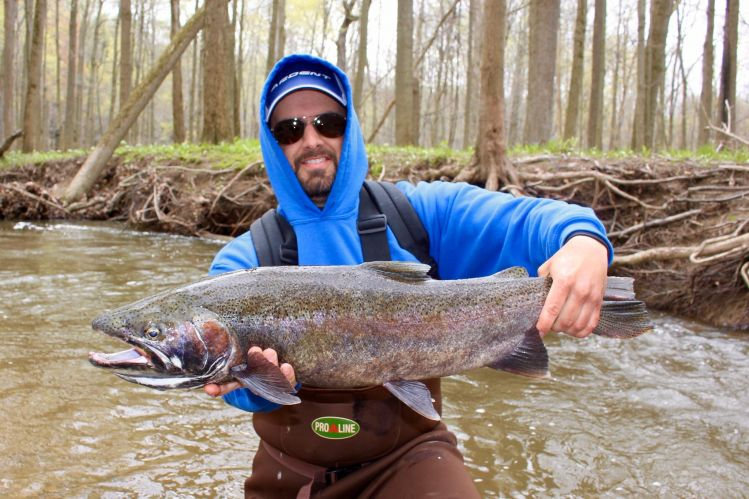Fly fishing pic of steelhead shared by chris pereira fly for Lake of egypt fishing report