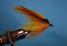 Flyfor European brown troutshared by Jimbo Busse | Fly dreamers